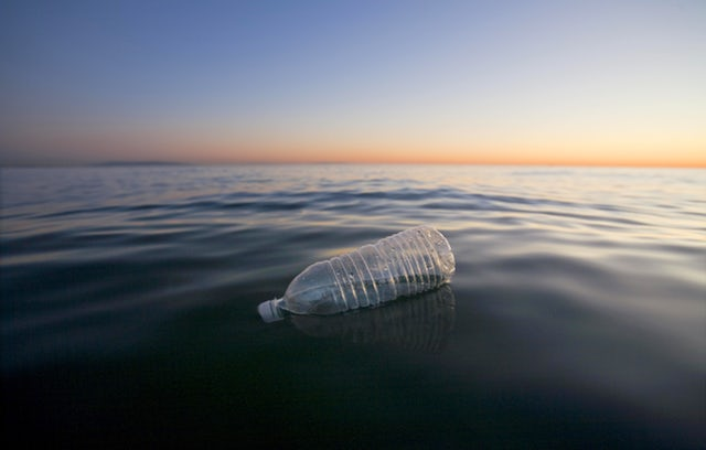 Amount of microplastics in the ocean is increasing rapidly.